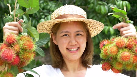rolnik : Young Asian farmer holding rambutan on her farm in Thailand