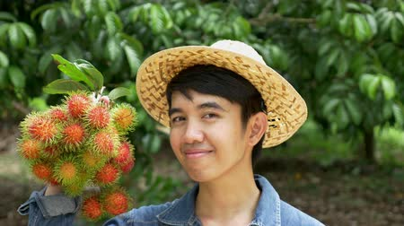 rolnik : Young Asian farmer holding rambutan on his farm in Thailand