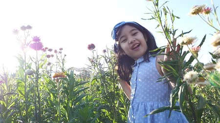 estilo de vida saudável : Happy Asian girl walking in the flower field with sunlight, Slow motion shot