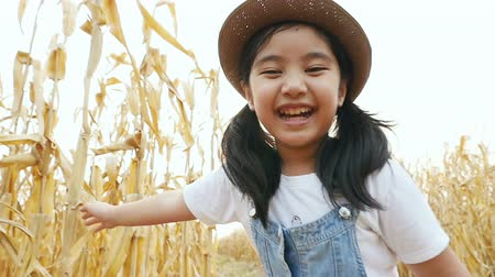radostný : Happy Asian girl walking in corn field, Slow motion shot Dostupné videozáznamy