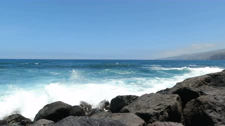 idílio : Wild atlantic coast of puerto de la cruz on tenerife island Vídeos
