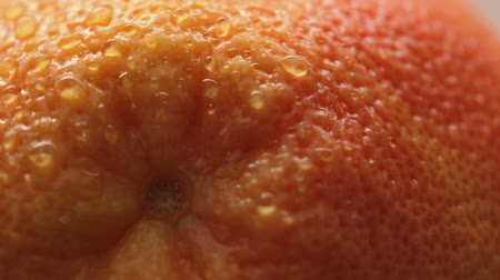 rind : Rind of fresh tasty grapefruit