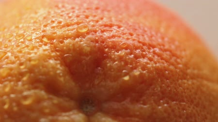 rind : Rind of fresh grapefruit
