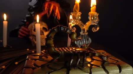 pohanský : Witch, scorpion and ritual