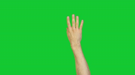 okey : Male ok gesture on green background