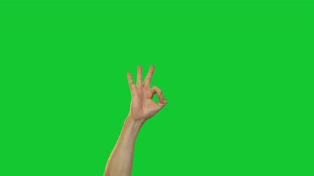 okey : Male okay gesture on green background