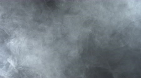 fumo : Texture of white smoke, 4k