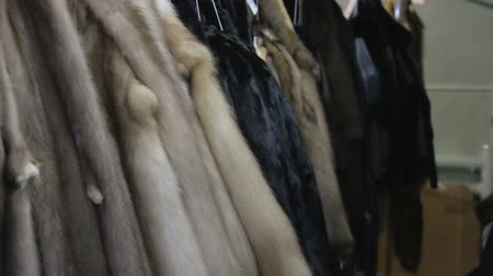 портной : Footage of hanging minks pelts
