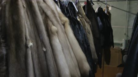 mink : Video of hanging minks pelts