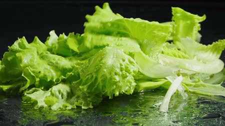 iceberg : Video of falling green leaves of lettuce Stock Footage