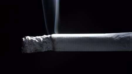 Video of smoldering cigarette and ashes Stock Footage