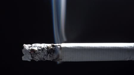 cienie : Video of smouldering cigarette with filter