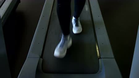 шейкер : legs and treadmill