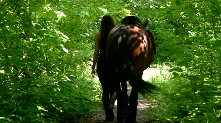 верхом : Back view young woman walk with horse in the forest