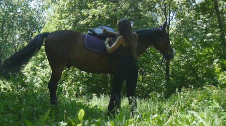 toka : Young woman tie up saddle on brown horse Stok Video