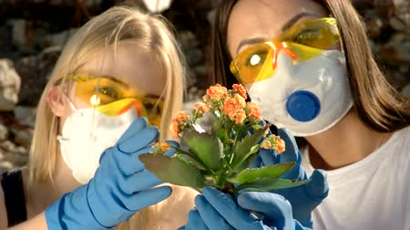 aftermath : Girls in paper respirators and yellow glasses are looking at a plant Stock Footage