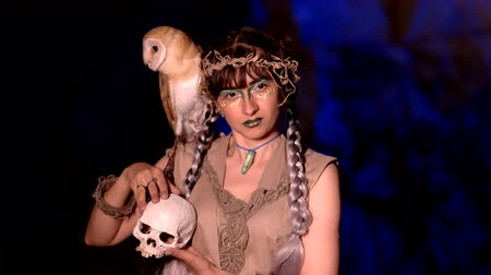 faerie : Fairy girl with a skull in her hands and an owl on her shoulder Stock Footage