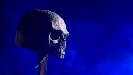 buried : Human skull in smoke in a dark place