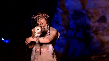 faerie : Fairy woman in medieval clothes strokes an owl in a cave Stock Footage