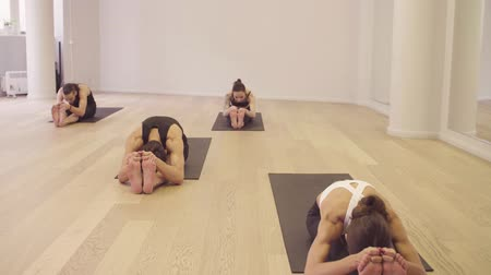 flexibility : Yoga class. People doing yoga exercises