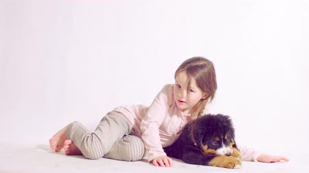 rozmazaný : Girl and puppy of a bernese shepherd dog