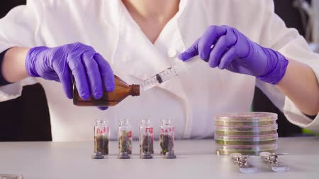 reseach : The scientists hands pouring solvent into the bottles Stock Footage