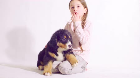chlupatý : Girl and puppy of a bernese shepherd dog