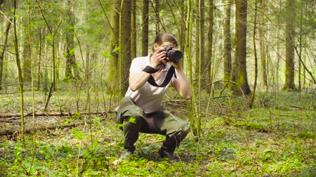 environmentalist : The ecologist making photos in the forest. Stock Footage