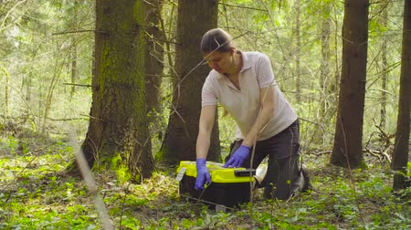 naturalist : Scientist ecologist in the forest taking samples of plants Stock Footage