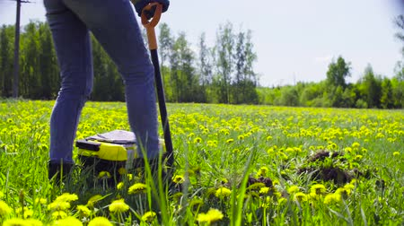 toolbox : Woman ecologist on the meadow digging a soil slit Stock Footage