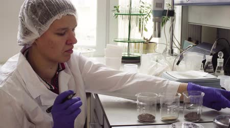 environmentalist : The scientist in laboratory marking soil samples Stock Footage