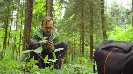 naturalist : The ecologist in a forest with smart phone