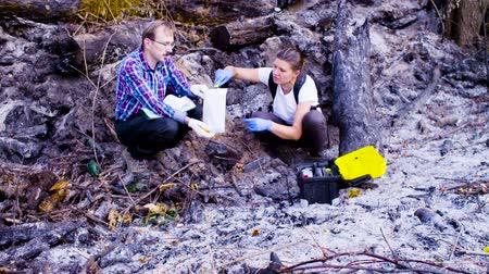 environmentalist : Two scientists ecologists working on place where the forest burned down Stock Footage