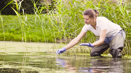 conservationist : Woman ecologist getting sampels of plants and measuring pH of the water