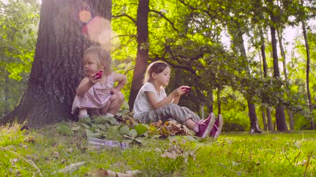 гранат : Two girls sitting in the park and eating garnet Стоковые видеозаписи