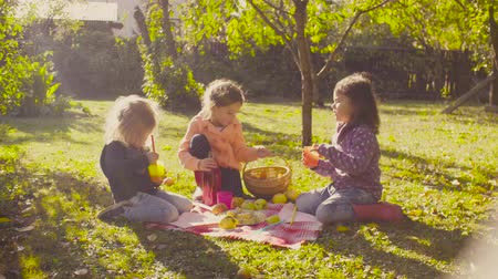 pan shot : Picnic in the garden. Children sitting on grass and drinking compot Stock Footage