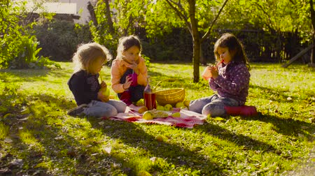 kompot : Picnic in the garden. Children sitting on grass, drinking compote and eating pie Wideo