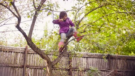 pan shot : Little girl sitting on a tree and eating apple Stock Footage