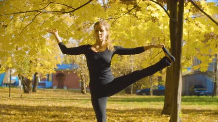 Young attractive woman doing yoga exersices in the park