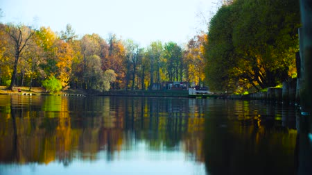 Autumn landscape, lake in the park, colorful leaves on trees Vídeos