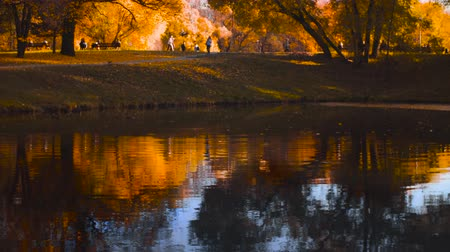 утки : Autumn, lake in the park, colorful trees reflected in the water