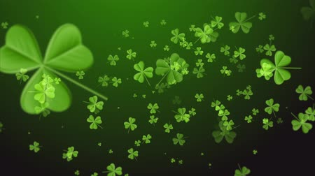 kelt : Saint Patricks Day. Falling clover leaves over dark green background Stok Video