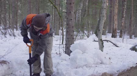 pan shot : Ecologist in the forest digging a soil slit