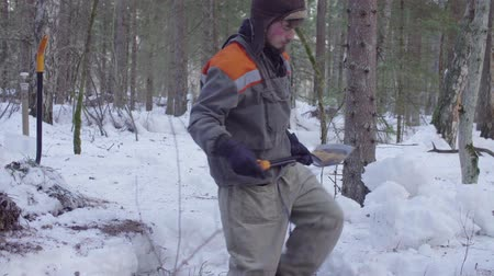conservationist : Ecologist in the forest digging a soil slit