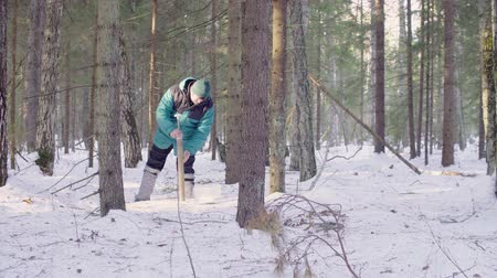 yarık : Ecologist getting samples of snow
