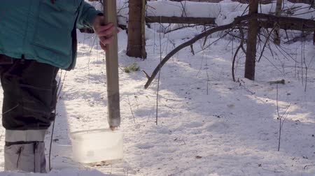 znečištěné : Ecologist getting samples of snow