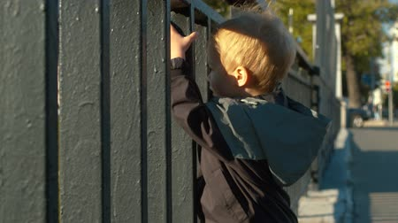 children only : Child standing near the fence Stock Footage