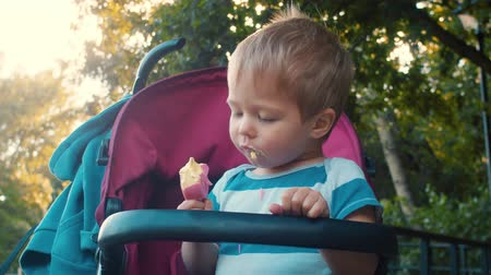 wandelwagen : Small child with ice cream in the park