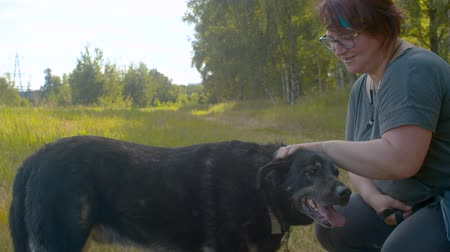 volunteering : Woman volunteer caress the dog