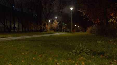 üres : Park in the autumn, rain drops on the grass